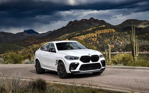 Is the 2021 BMW X6 Series an Automobile Engineering Marvel?
